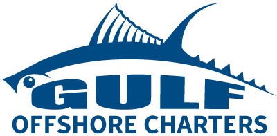 Website Design for Gulf Offshore Charters by Ditibit Web Solutions